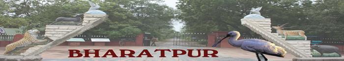 Bharatpur Court