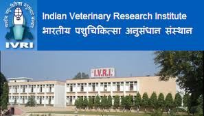 Indian Veterinary Research Institute Bareilly