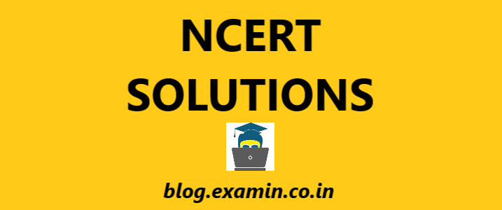 NCERT Solutions CBSE